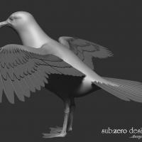 3d-modeling-seagull-wings-2