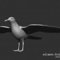 3d-modeling-seagull-wings