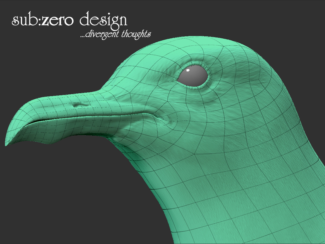 3d-modeling-seagull-wire-face